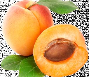Повидло с ароматом абрикоса